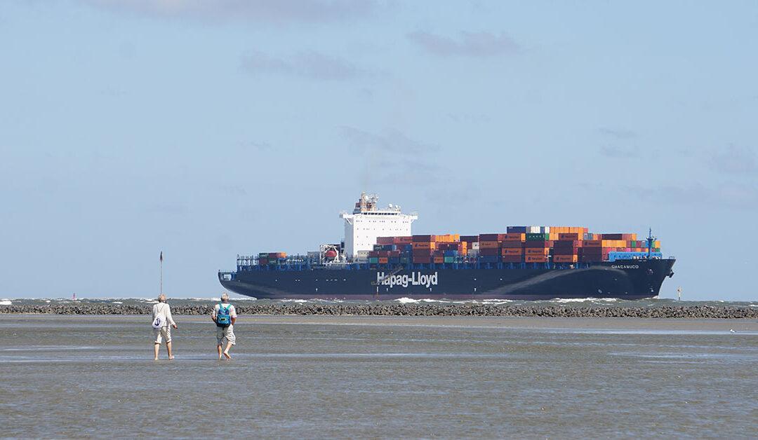 Wattwanderer vor dem Leitdamm der Elbe bei Cuxhaven